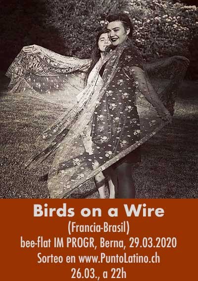 29.03.20 Birds on a Wire (BRA)